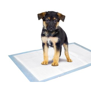 Puppy Pads Trainingsmatte